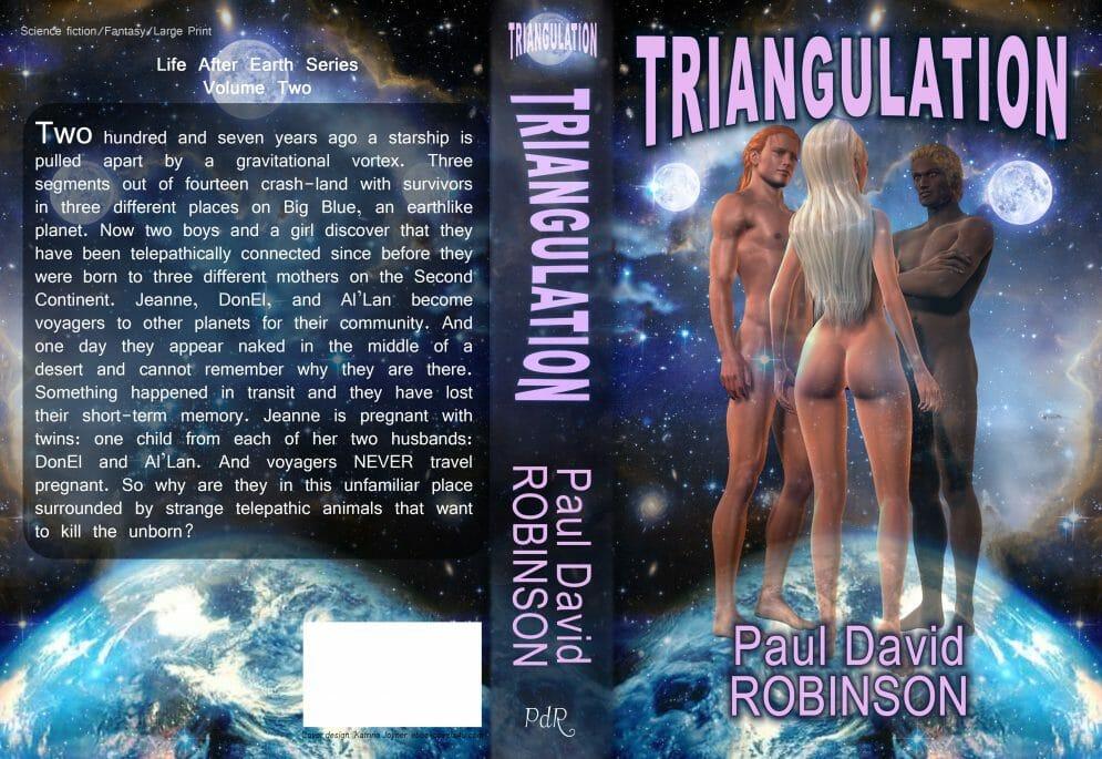 triangulation wrap cover2